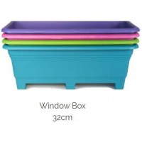 Pot Plant - Window Box 32cm Lime